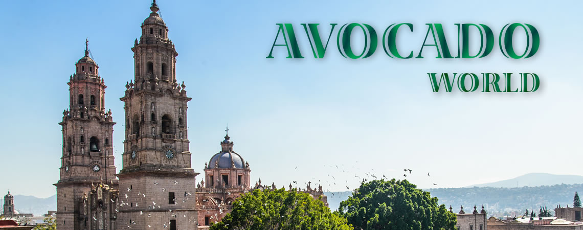 avocado world